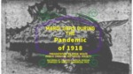 Mardi Gras During the Pandemic of 1918 by Eddie Wolfe